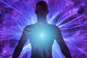 energy healing - wolf healing ottawa